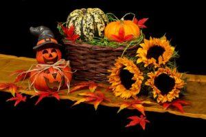 autumn-20461__340
