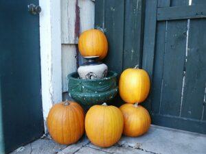 autumn-207854__340